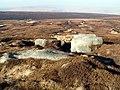 Bleaklow Meadows - geograph.org.uk - 694993.jpg
