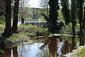 Blick zur Holzbrücke am Biberteich April 2016 - panoramio.jpg