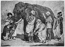 היטלים ללמידה - משל העוורים והפיל