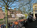 Blossom and bicycles on Quayside - geograph.org.uk - 2329635.jpg