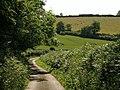 Bluegate Hill (2) - geograph.org.uk - 1379442.jpg