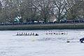 Boat Race 2014 - Main Race (89).jpg