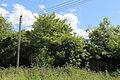 Bobbingworth, Essex, England - field off Gainsthorpe Road 01.JPG