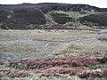 Boggy Valley Floor - geograph.org.uk - 136907.jpg
