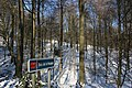 Bois du Pottelberg - Pottelbergbos 24.jpg