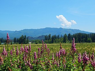 Enumclaw, Washington - Farmland and Boise Ridge by Enumclaw