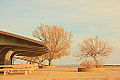 Bonneville Salt Flats Rest Area, I-80 Eastbound, Utah free creative commons (4345560963).jpg