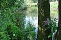 Brabantse Biesbosch.jpg