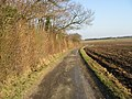 Bridleway and farm road on Cooting Down - geograph.org.uk - 1100308.jpg