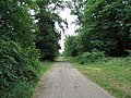 Bridleway into Exton Park - geograph.org.uk - 188375.jpg