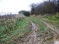 Bridleway near Dean Hill Farm - geograph.org.uk - 1052996.jpg