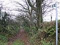 Bridleway near Parc-y-llyn - geograph.org.uk - 620880.jpg