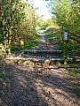 Bridleway to Tottington Mount - geograph.org.uk - 757863.jpg