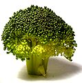 Broccolli doesnt grow on trees, you know.jpg