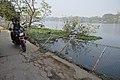 Broken Southern Fence - Santragachi Jheel - Howrah 2017-12-25 5655.JPG