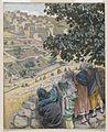 Brooklyn Museum - The Disciples Eat Wheat on the Sabbath (Les disciples mangent du blé au sabbat) - James Tissot - overall.jpg