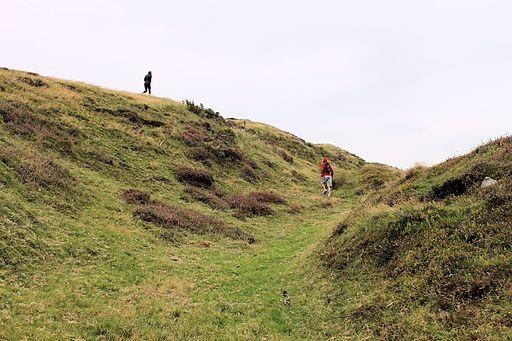 Bryngaer Penycloddiau Hillfort; Bryniau Clwyd; Gogledd Cymru North Wales 30