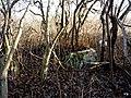 Bydgoszcz - opuszczony cmentarz ewangelicki przy ul Smętnej 10 i Nastrojowej14 - panoramio (3).jpg