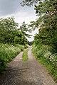 Byway running parallel to Salisbury Andover railway line - geograph.org.uk - 468761.jpg