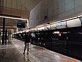 CC2 Bras Basah station Platform A.jpg