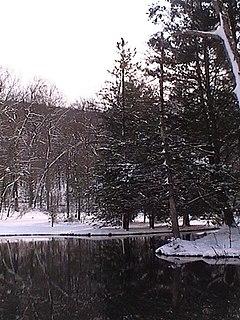 Todd Township, Fulton County, Pennsylvania Township in Pennsylvania, United States