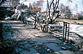 CSIRO ScienceImage 4078 Aftermath of Canberra bushfires in the suburb of Duffy ACT 2003.jpg