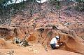 CSIRO ScienceImage 4381 Hillslope gully and sheet erosion.jpg