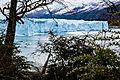 Calafate - Glaciar.jpg