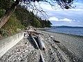 Cama Beach - panoramio.jpg