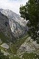 Camino - panoramio (23).jpg