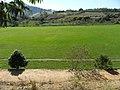 Campo Piedade de Cima parcial VII. - panoramio.jpg