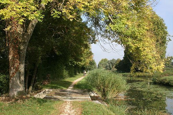 Faune et flore du canal dOrlans Wikiwand