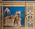 Capella degli Scrovegni (Padova) jm56705.jpg