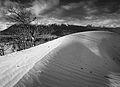 Carcross desert (10487987814).jpg