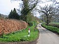 Carpenter's Hill - geograph.org.uk - 157123.jpg
