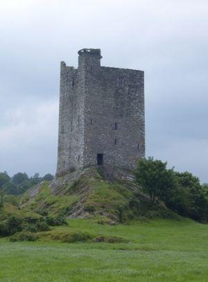 Carrigaphooca Castle - Carrigaphooca Castle