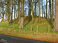 Castle Hill - Eaglesham.JPG