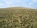 Cefn Perfedd south of Fan Llia - geograph.org.uk - 408830.jpg