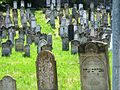 Cemetery tokaj.jpg