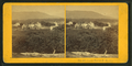 Center Harbor, N.H, from Robert N. Dennis collection of stereoscopic views 2.png