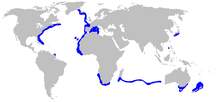 World map with blue shading in the northern Atlantic Ocean, western Mediterranean Sea, southern Indian Ocean, and off Japan
