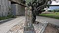 Ceramics pavilion 053.JPG