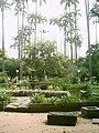 Chafafiz Jardim Velho.JPG