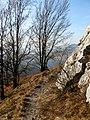 Chodník na Vapeč - panoramio.jpg