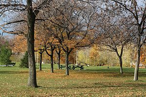 Christie Pits - Image: Christie Pits November 2010