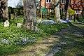 Churchyard path east of St Mary's Church, Stapleford Tawney.jpg