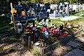 City of London Cemetery split log fence grave with plastic flower bed 1.jpg