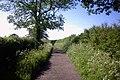 Cliffs Lane, Sutton - geograph.org.uk - 465336.jpg