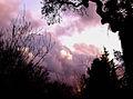 Clouds 021611-2 (5452108543).jpg