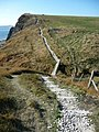 Coast path towards Cuddle - geograph.org.uk - 1634130.jpg